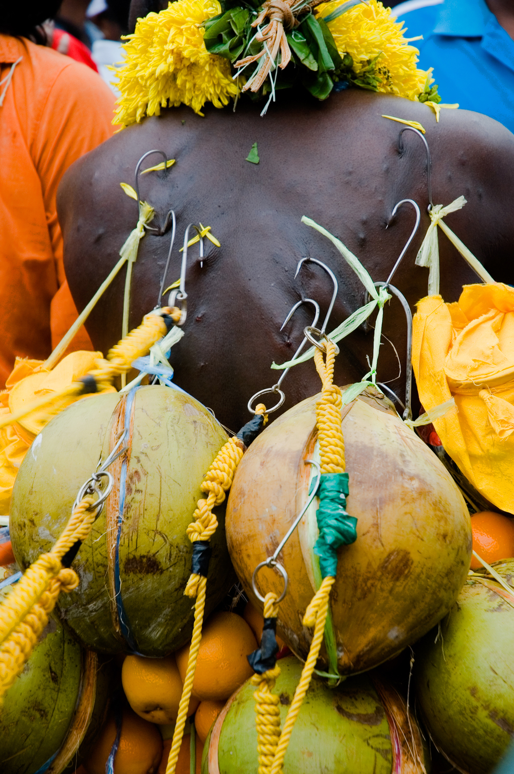 wb_thaipusam_back_fruit.jpg