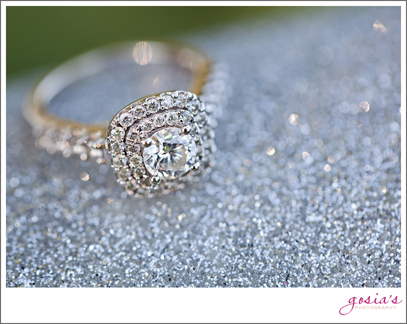 Fox Valley-engagement-session-Wisconsin-Gosia's-Photography_0005.jpg