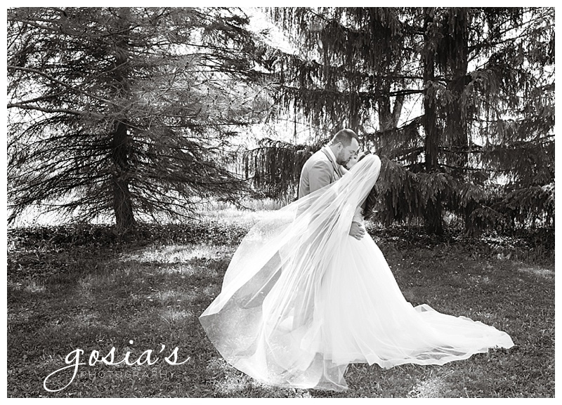 Milwaukee-Torrie-Dave-Tryba-County-barn-wedding-Appleton-photographer-Gosias-Photography-_0027.jpg