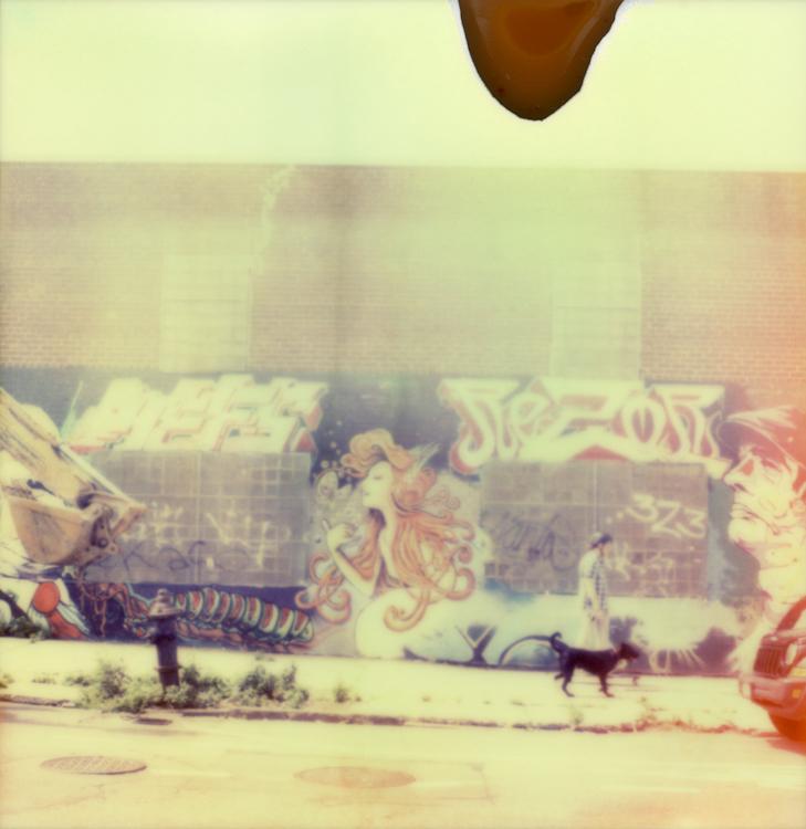 Skater & Dog