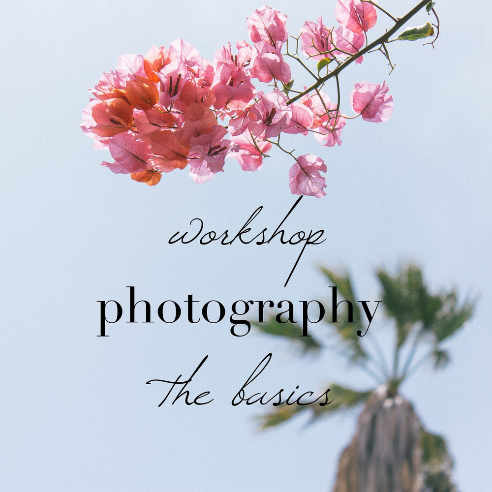 Workshop photography basics - basis fotografie