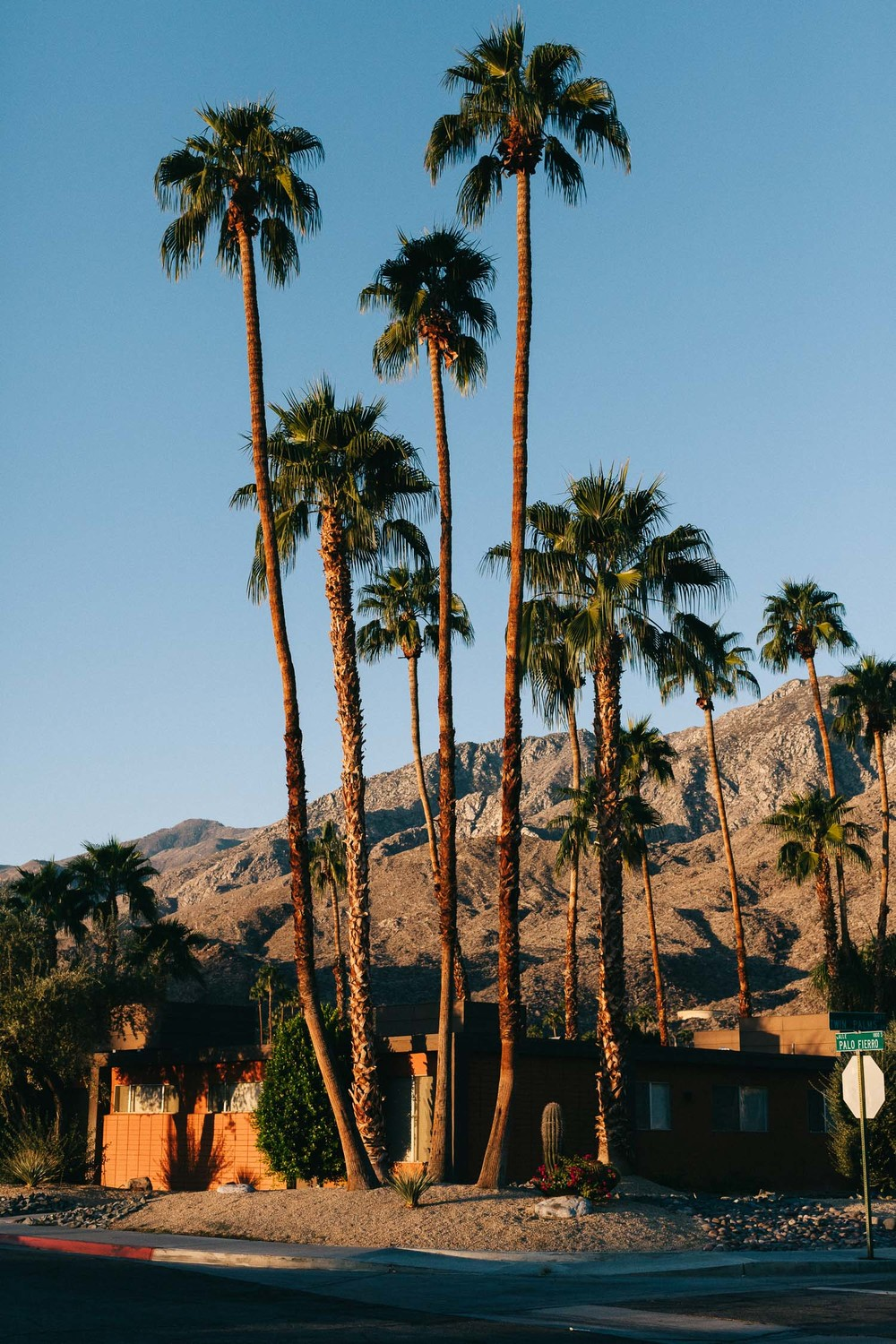 Southern-California-LA-Palm-Springs-travel-photography-by-On-a-hazy-morning-Amsterdam-22.jpg
