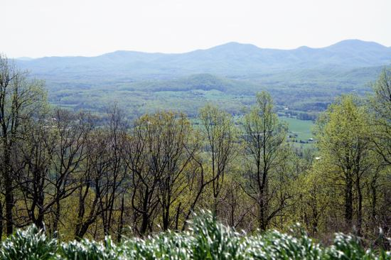 Blue Ridge Parkway: mostly I just saw my feet during the race