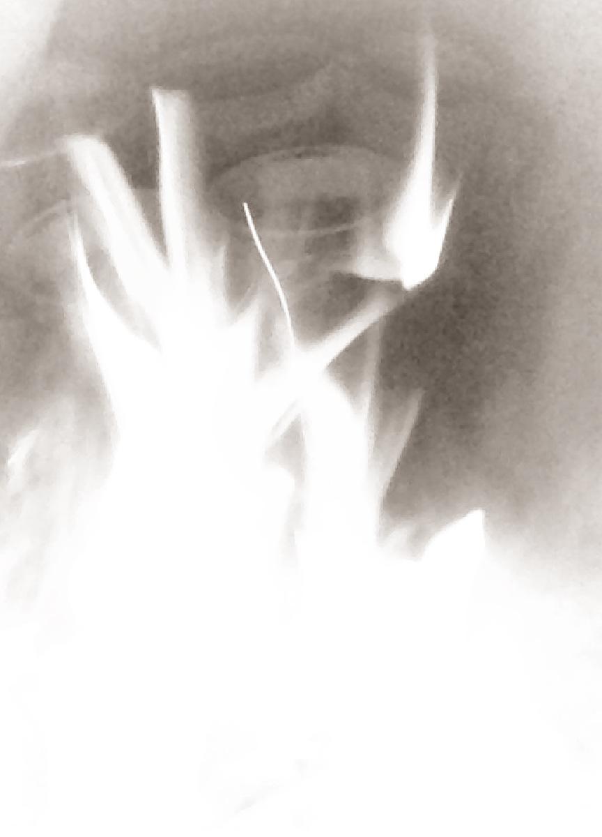 Gray Flames.JPG