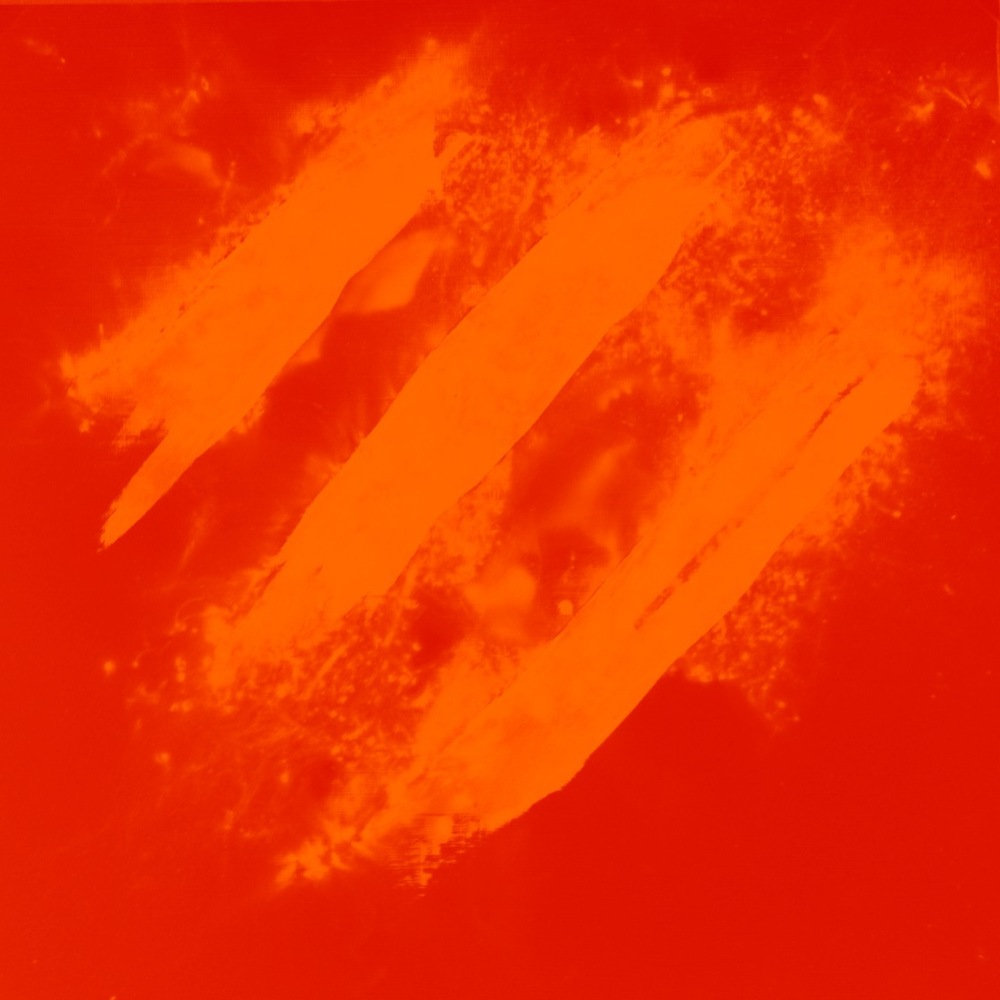 The Fireproof Bones (Red Orange).jpg