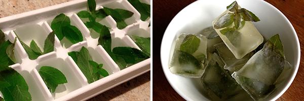 mint_ice_cubes_freezing_herbs_edmonton_fall_recipe_style_fashion_blog_events.jpg