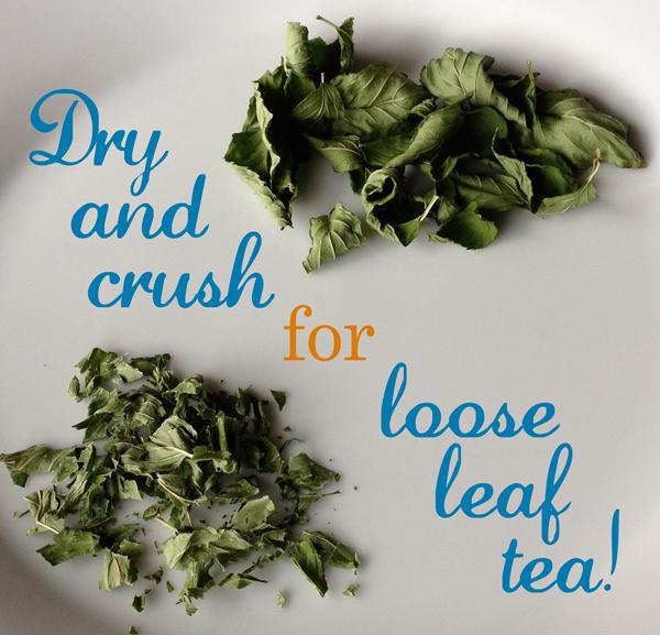mint_dry_leaves_loose_leaf_tea_homemade_edmonton_fashion_style_blog.jpg