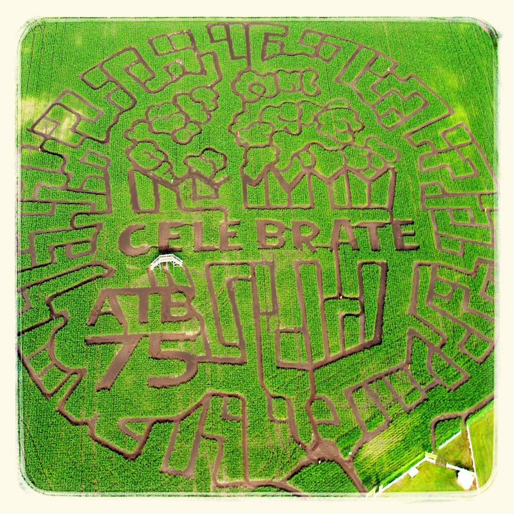 You might want to memorize this... it's this year's Edmonton Corn Maze Design.