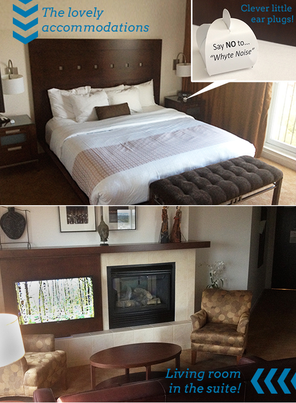 metterra_hotel_on_whyte_avenue_edmonton_old_strathcona_accommodations_boutique_staycation.jpg