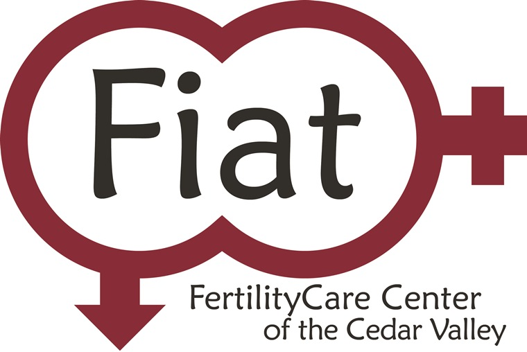 Fiat Logo NEW (1).jpg