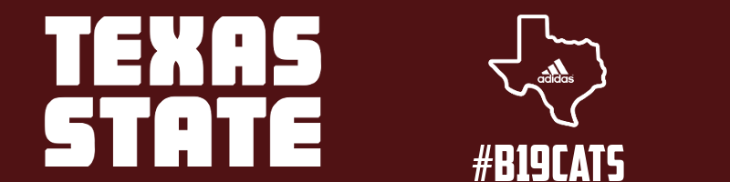 Texas State Banner.png