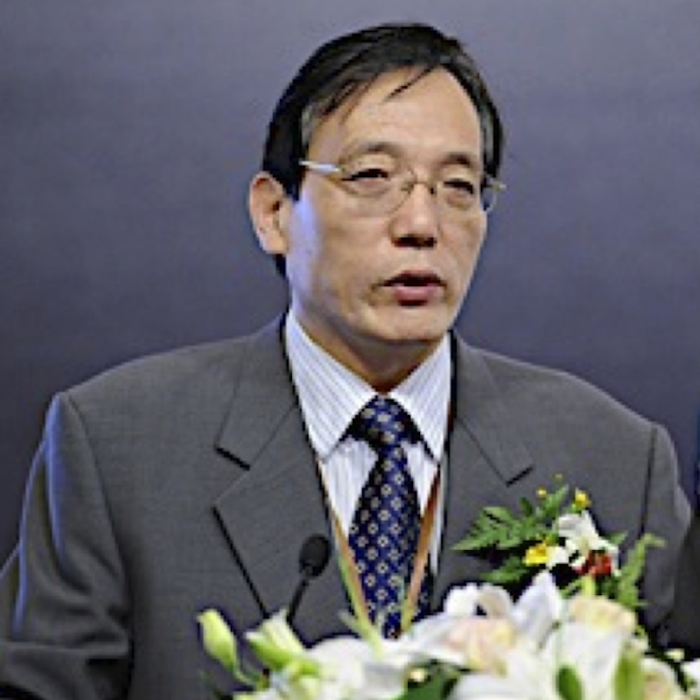 Shijin LIU Vice Minister of the China State Council's Development Research Center