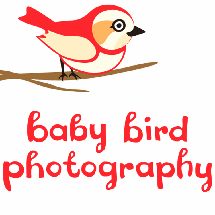 baby bird photography