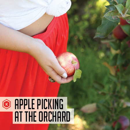 Oct_13_Fashion-Apple-Orchard-01a-01.jpg