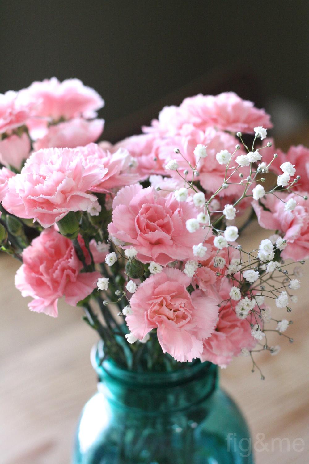 carnationpink.jpg