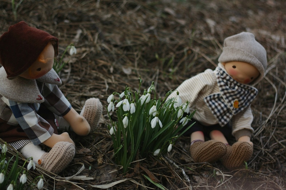 Finding the snowdrops, by Fig and me