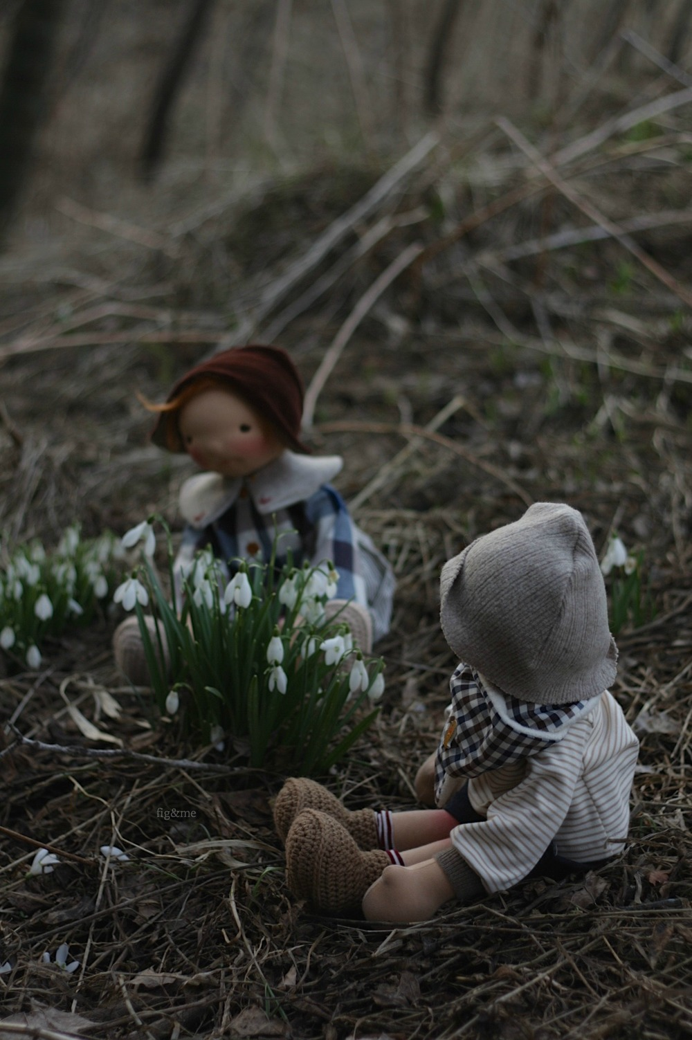 Playing by the snowdrops, by Fig and me