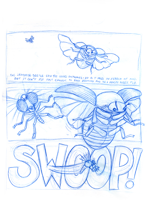 robber fly page 1.jpg