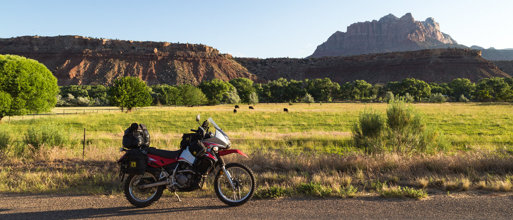 Moo Cows, Mountains and a Motorcycle, Utah