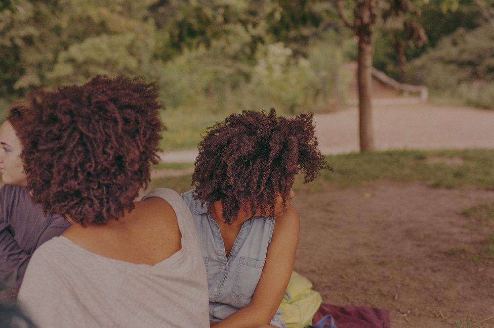 lani's art in the park ii (film)