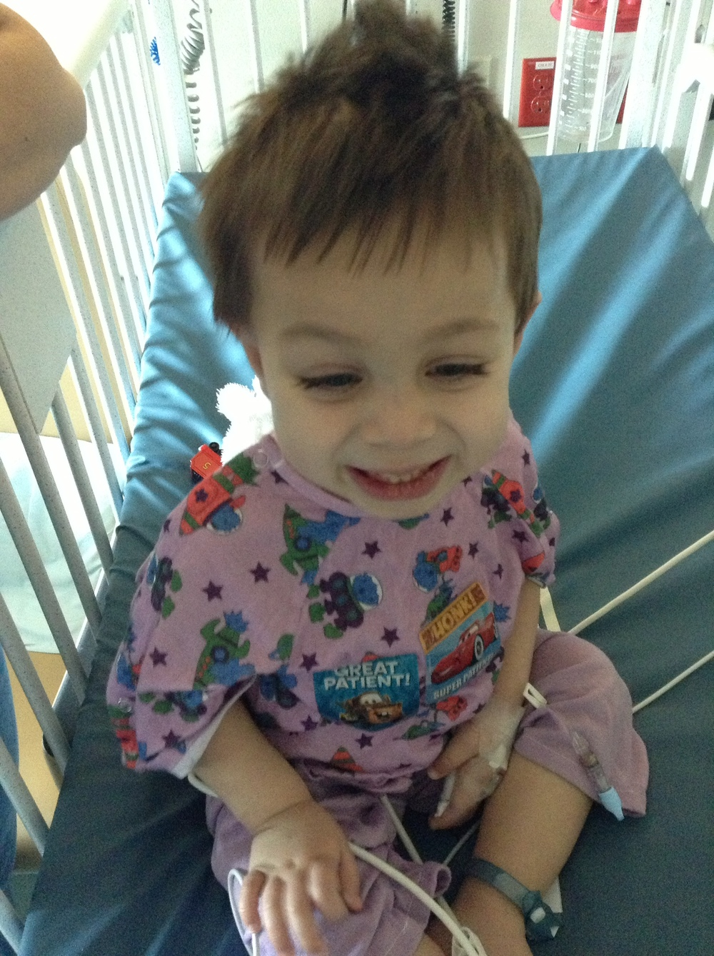July also marks the three year anniversary since this stud's transplant.
