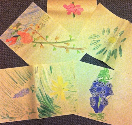 More fabulous student drawings to inform the flower designs