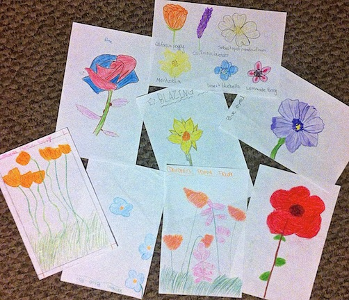 Fabulous student drawings to inform the flower designs