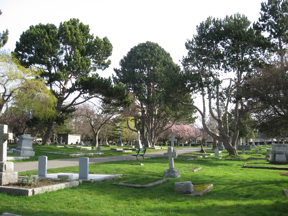 Ross Bay Cemetery sculptural trees.
