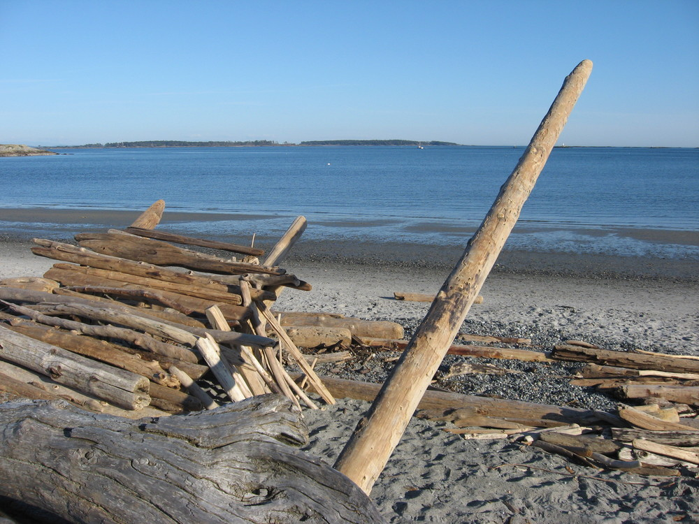 Willows Beach, Victoria, BC, great driftwood shopping
