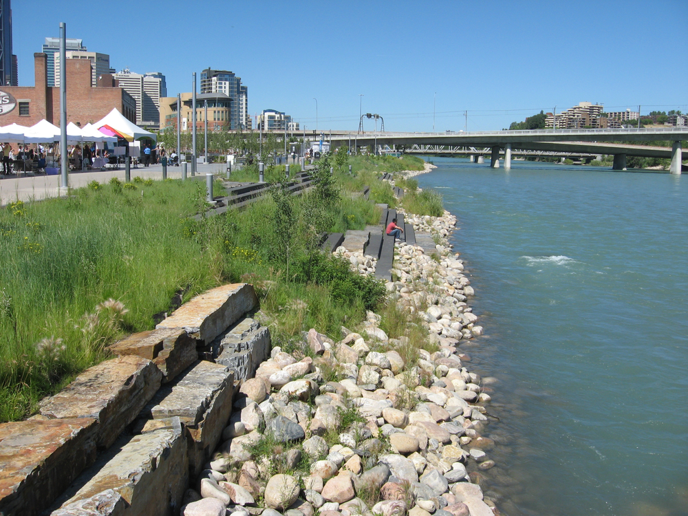 Another look at our RiverWalk which has several places to sit and contemplate the river's edge.  The Bow River is one of the best fly fishing rivers in the world.  Even in downtown Calgary, you can walk to the rivers edge and try your hand a fly fishing.