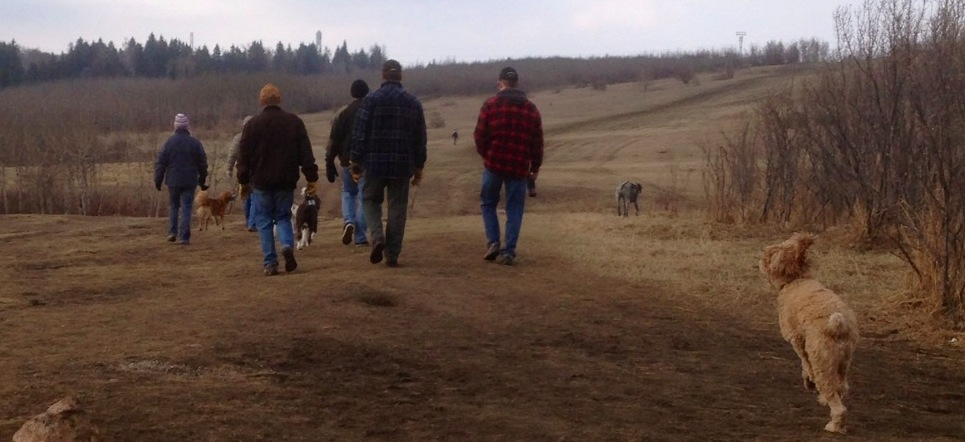 A group of dog walkers in Upper Edworthy dog park. This is a very large regional dog park where people from the entire west side of the city come to walk their dog and enjoy spectacular views.