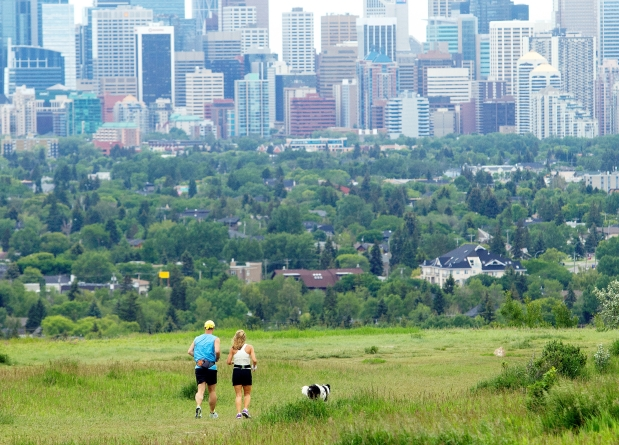 Calgary's Dog Parks offer some of the spectacular views of the city's skyline.