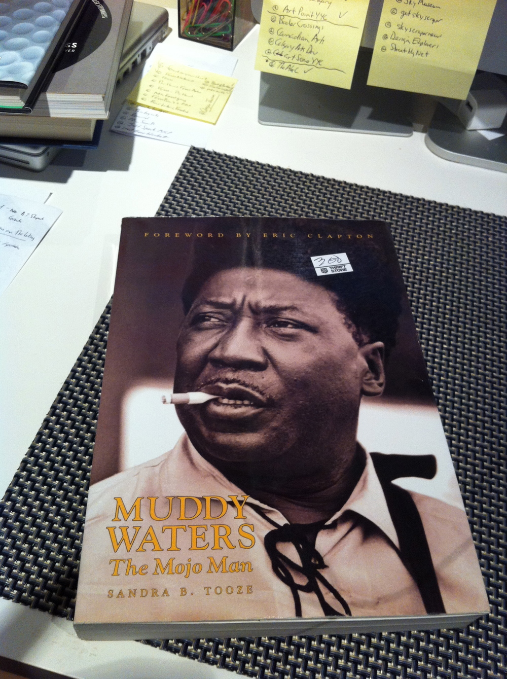 Muddy Waters: Mojo Man in great condition for $1.50...gotta love thrifting...