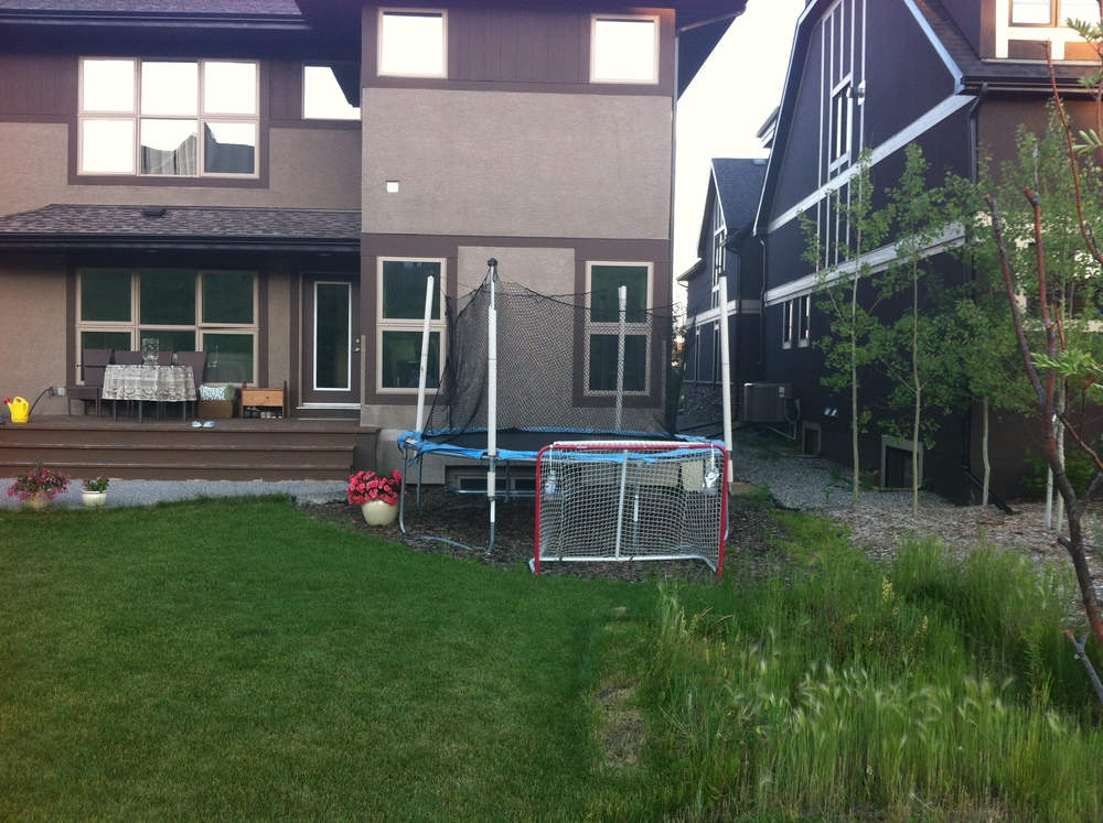 Hockey nets and trampolines are everywhere.