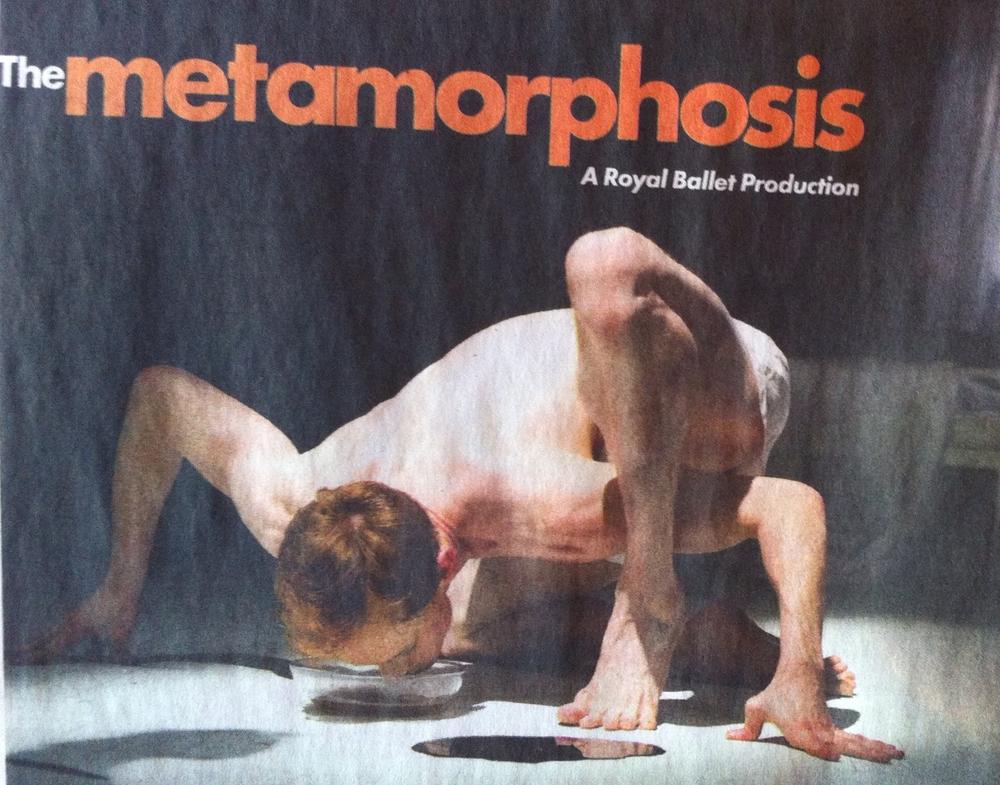Essays on alienation in the metamorphosis