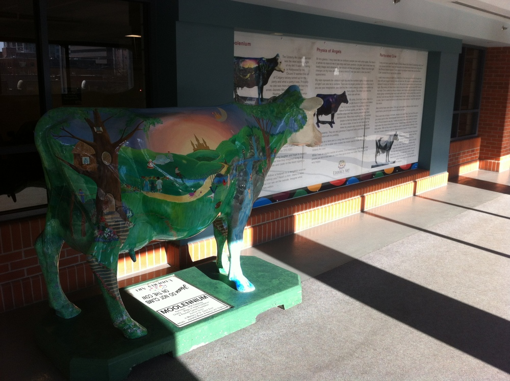 Just one of the dozen of so cows that are grazing on the +15 level of the Centennial Parkade.