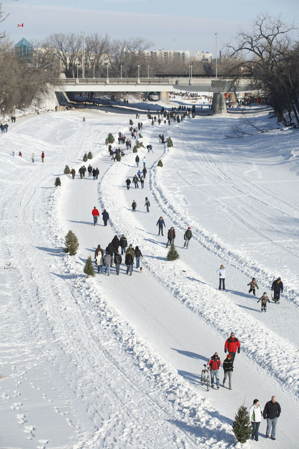 Thousands of people enjoy the world's longest skating rink in Winnipeg.  Perhaps Calgary could convert some if its pathway system into a skating trail.  (photo courtesy of Tourism Winnipeg)