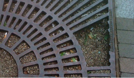 Tree grates like this on are common on downtown sidewalks. They are not problem for men in shoes but for women they can be an accident waiting to happen.