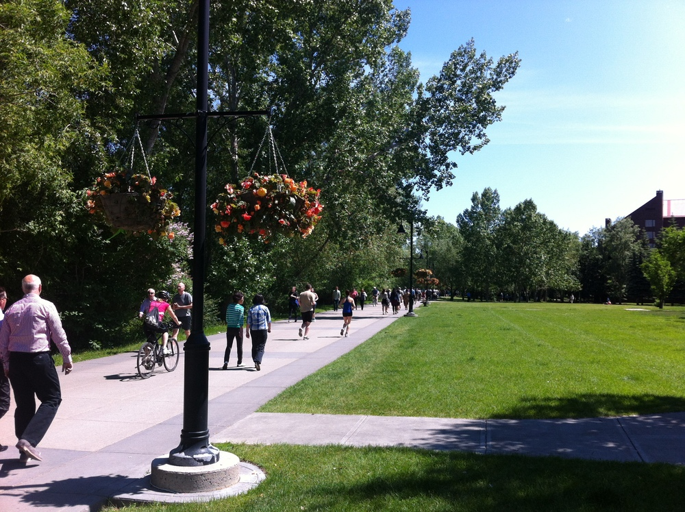 The Bow River promenade in downtown's Eau Claire district on the north side of downtown is a very popular spot for joggers, walkers and cyclists.