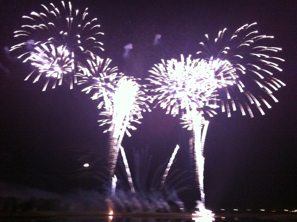 Calgary has a festival pretty much every weekend through out the summer, including  Global Fest  fireworks completion in lovely Elliston Park, August 14 to 15, 2014.