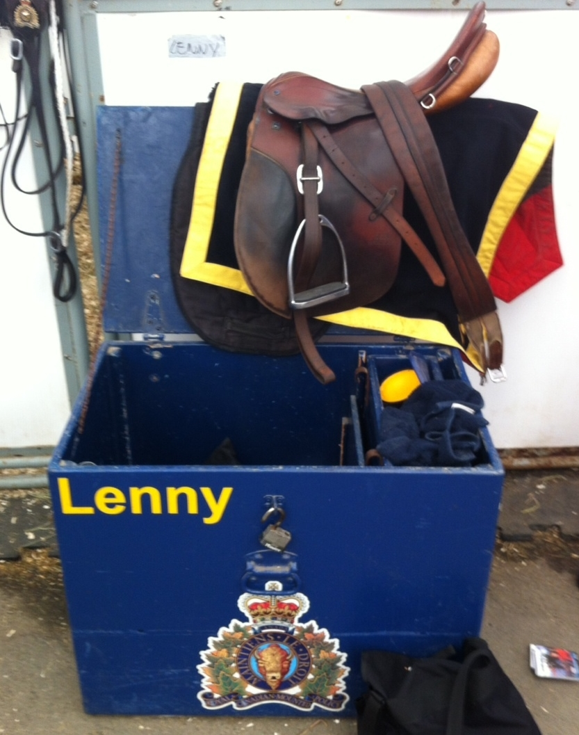 Lenny and his friends were well treated before and after the RCMP musical rides - I thought I was in a hair salon with all the grooming going on.