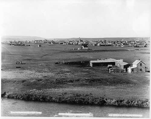 Calgary before trees.