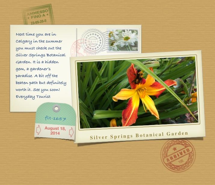 SSBg postcard