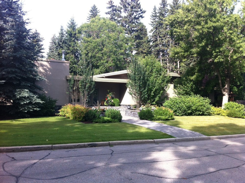 Another of the mid-century modern homes.   Note that there is no sidewalk on this side of the street and no massive driveway, creating a nice balance between man and nature.