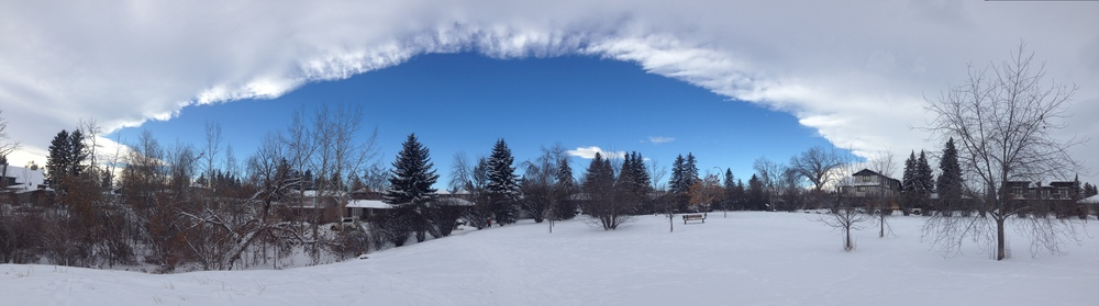 A Chinook Arch which was the inspiration for the Bow Trail bridge.