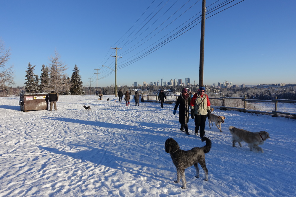 People are out walking their dogs and meeting neighbours 365 days of the year at River Front Park.