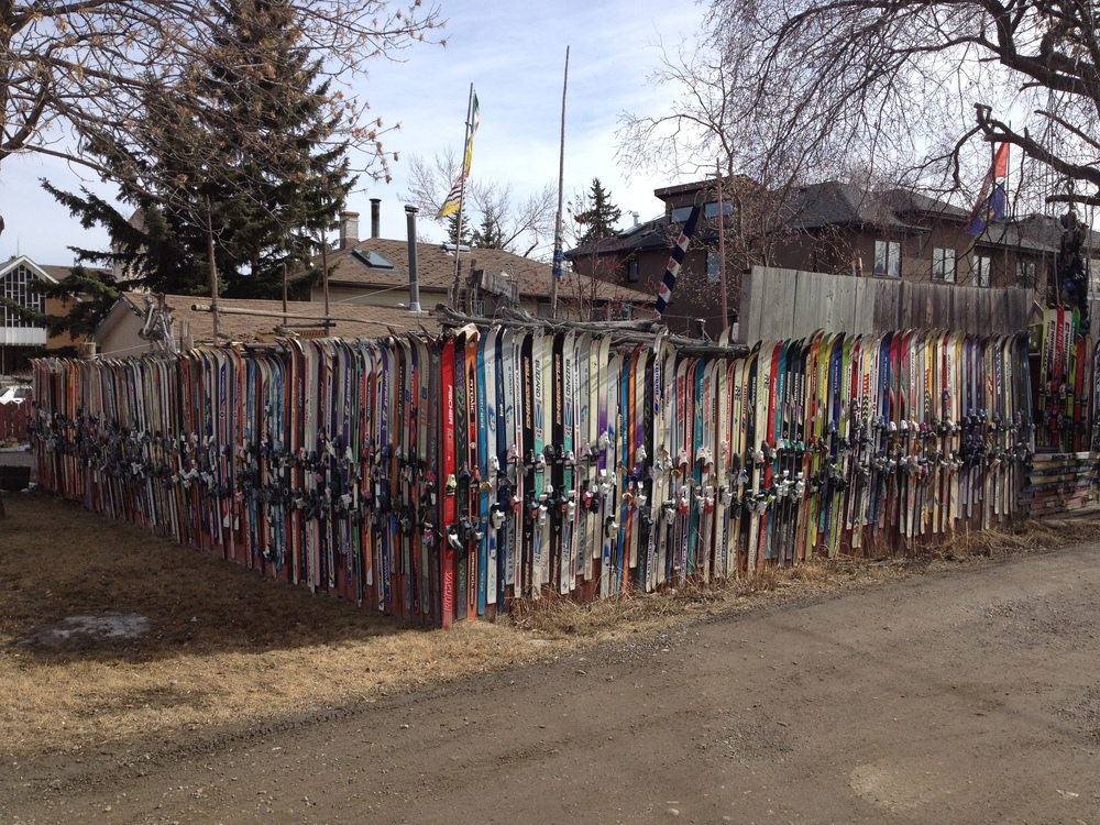 Ski fence in Altadore