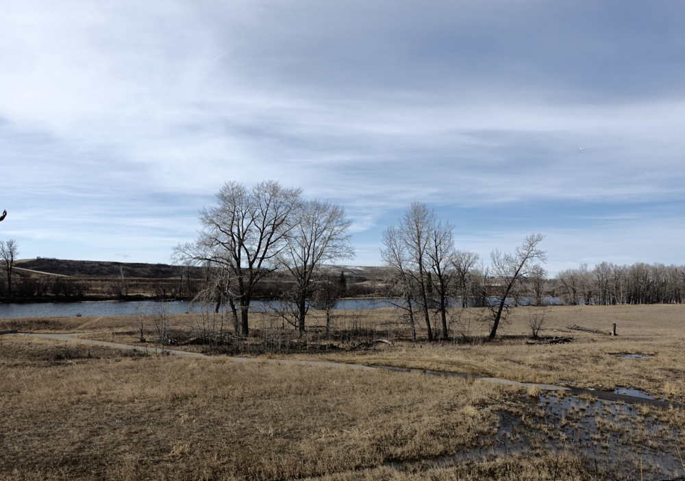 Bow River backyard