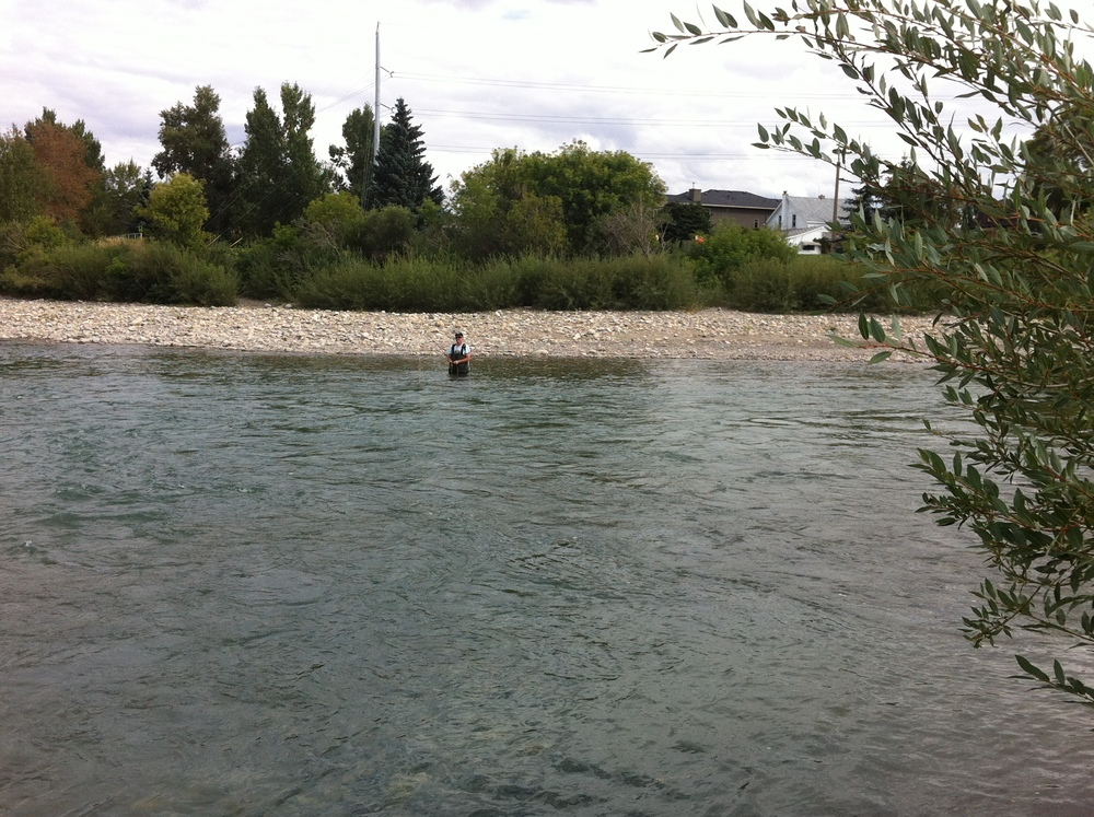 Fishing in the Bow River, which is in your backyard if you live in a condo in Eau Claire, East Village or Inglewood.