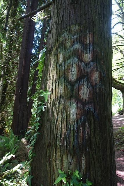 painting on bark